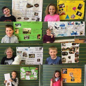 3. Klasse präsentiert viele Tiere