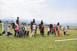Menschen, Pferde, Hund und Katzen – eine Gemeinschaft